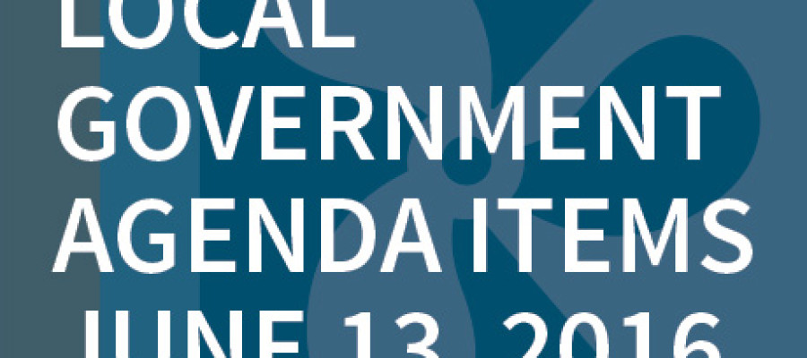 SWFMIA local government agenda items for the week of June 13, 2016