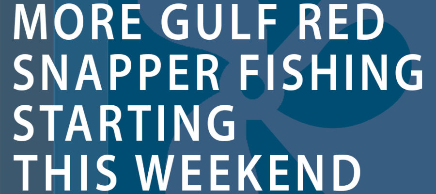 Anglers can take advantage of more Gulf red snapper fishing starting this weekend