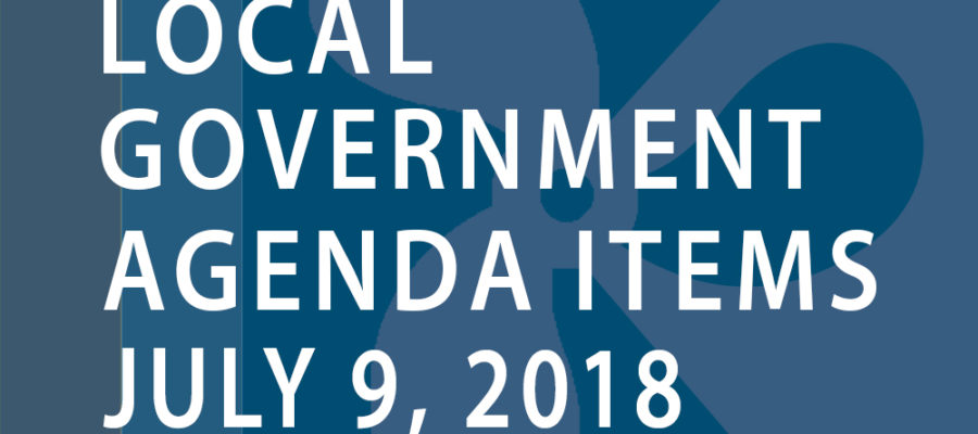SWFMIA local government agenda items for the week of July 9th, 2018