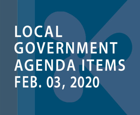 SWFMIA local government agenda items for the week of February 3, 2020