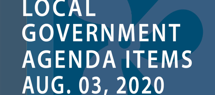 SWFMIA local government agenda items for the week of August 3, 2020