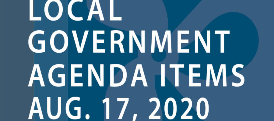 SWFMIA local government agenda items for the week of August 17, 2020
